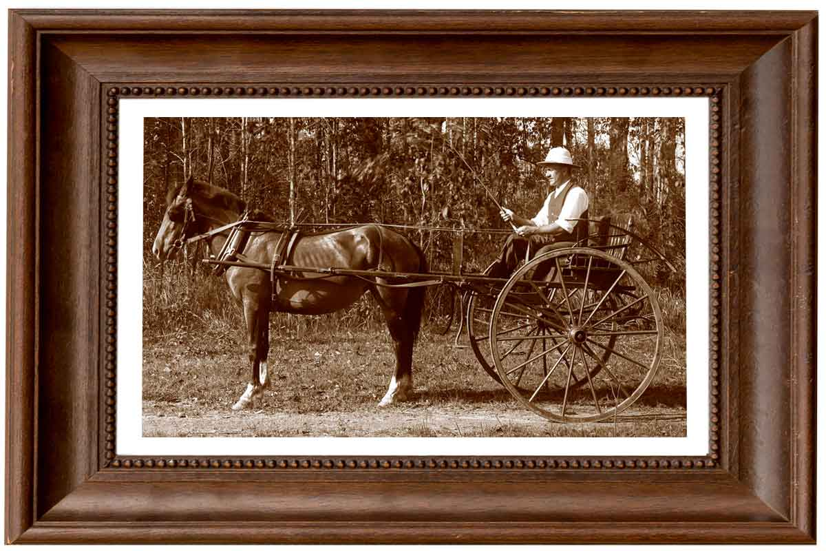 VIP-Picture-framing-horse-cart